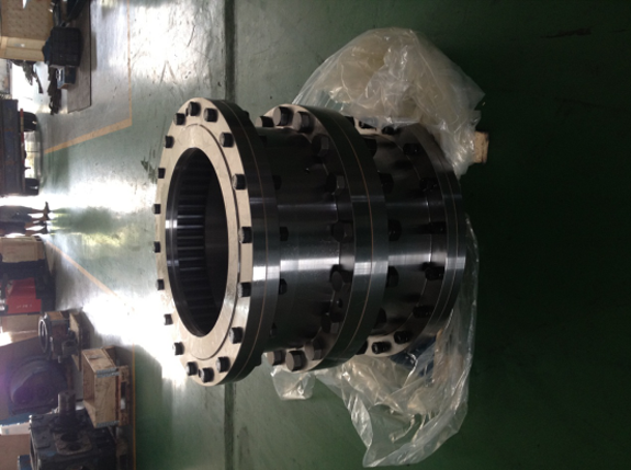 DYT gear coupling 120G20 is used in a national pumping station